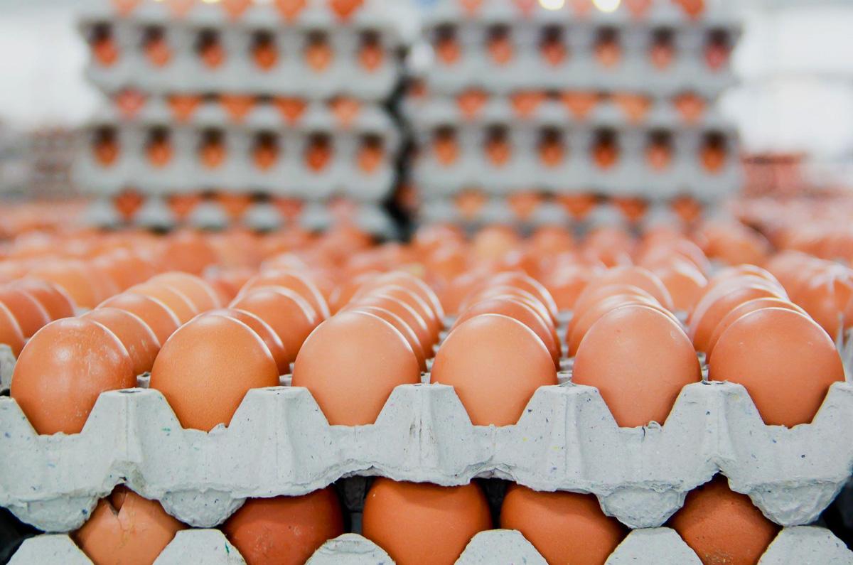 O ovo que se tornou a foto mais curtida do Instagram